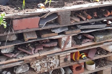 Oak Learning Thumbnail Image
